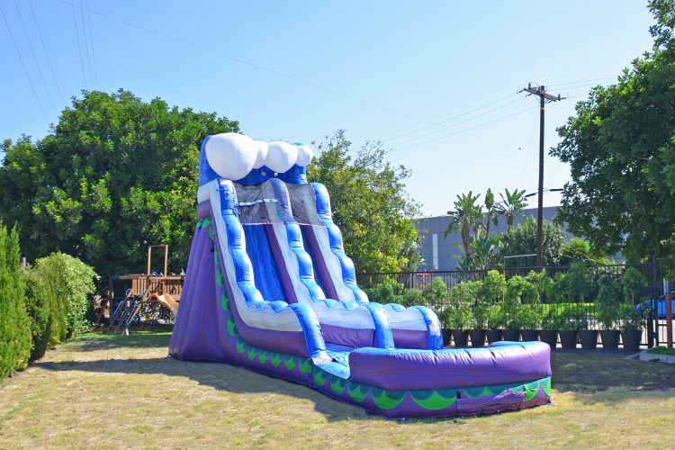 20Ft Periwinkle